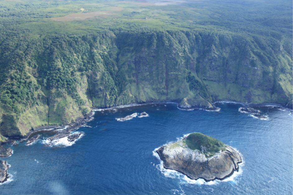 查塔姆群岛