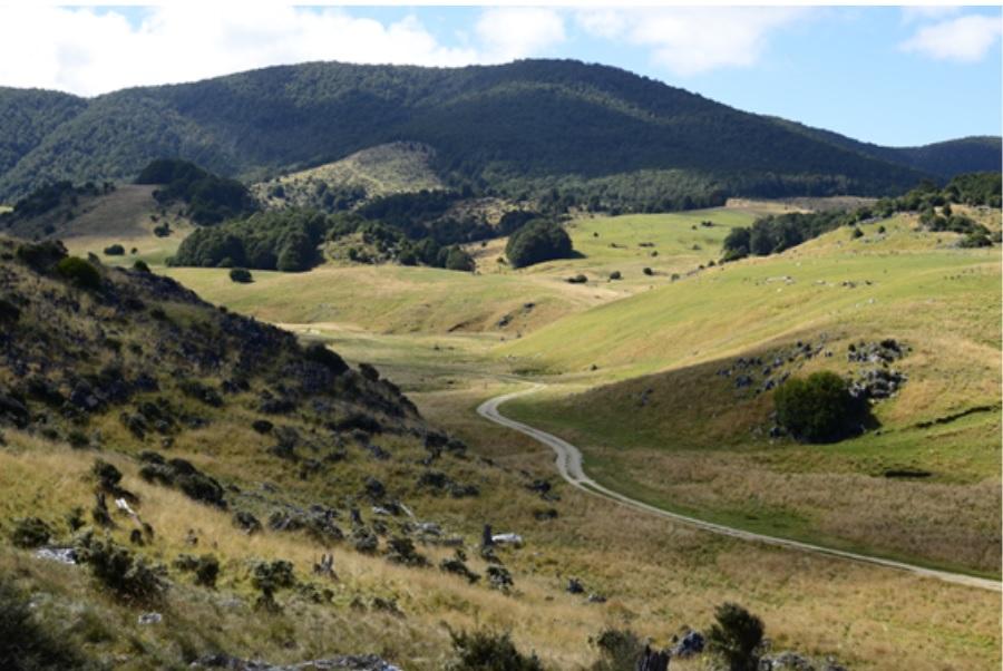Pista interna di Abel Tasman