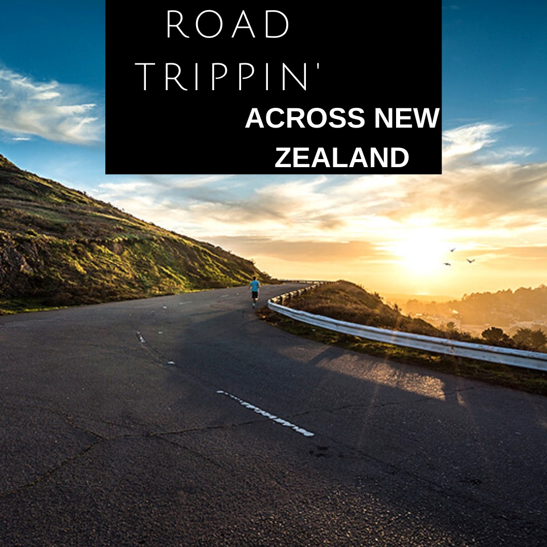 ニュージーランドを横断するロードトリップ