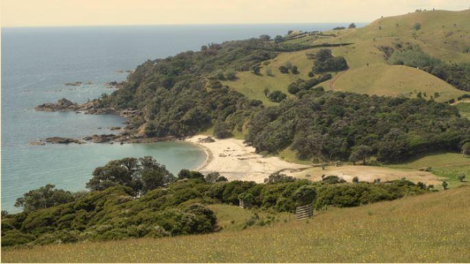 Isola di Waiheke